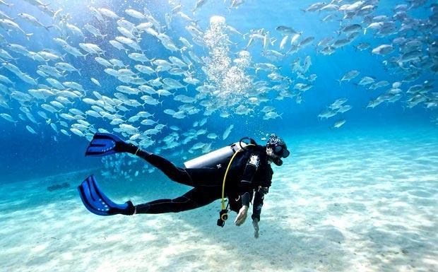 Scuba diving, scuba schools and dive trips in Phuket